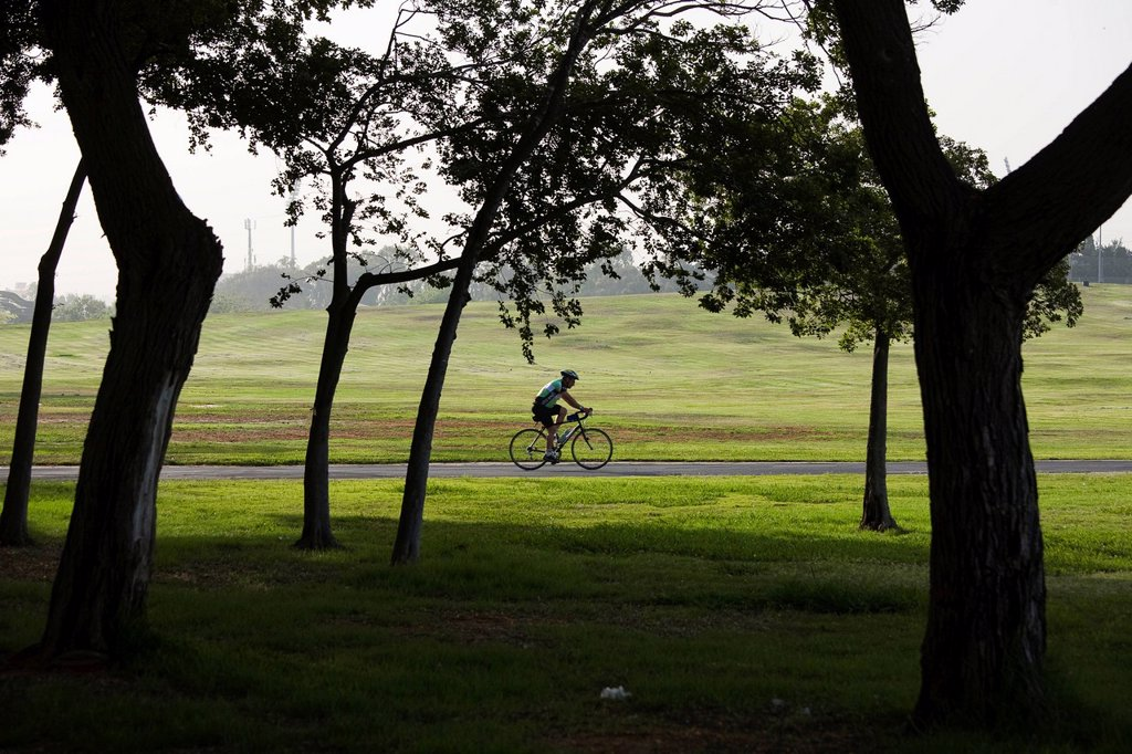 Stock Photo: 4119-9617 Photograph of a bicycle rider in the Yarkon Park _ the green lungs of the city of Tel Aviv