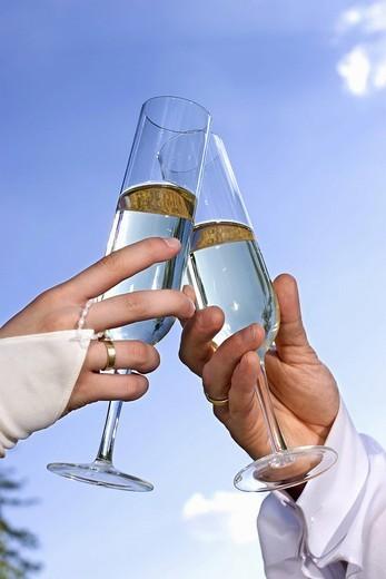 Newlyweds holding glasses : Stock Photo