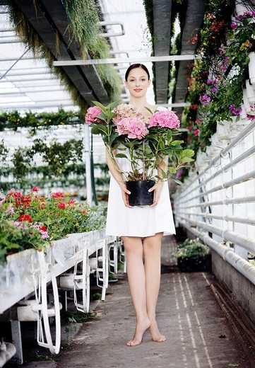 Woman in the greenhouse : Stock Photo