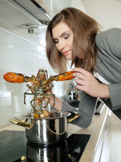 Woman cooking a lobster. : Stock Photo