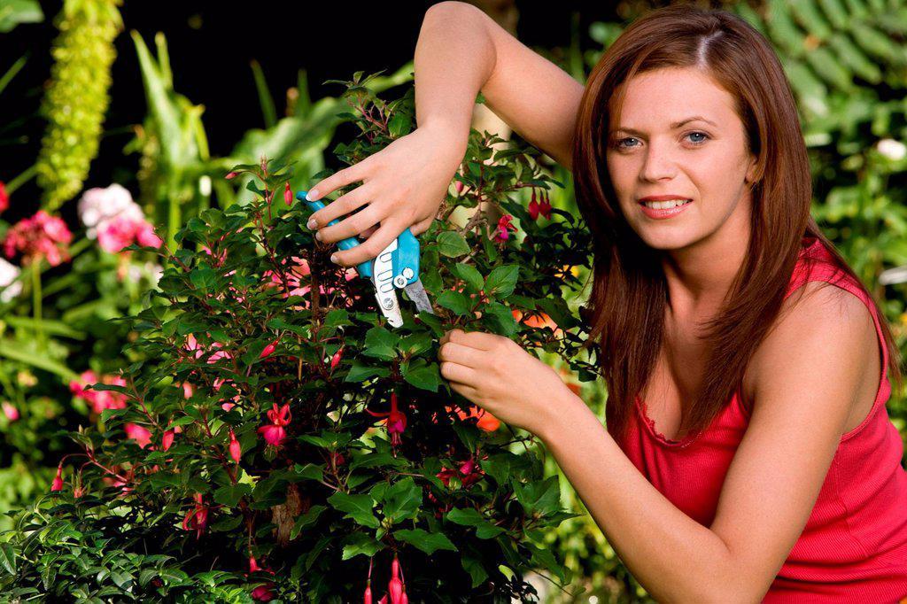 Woman working in garden. : Stock Photo