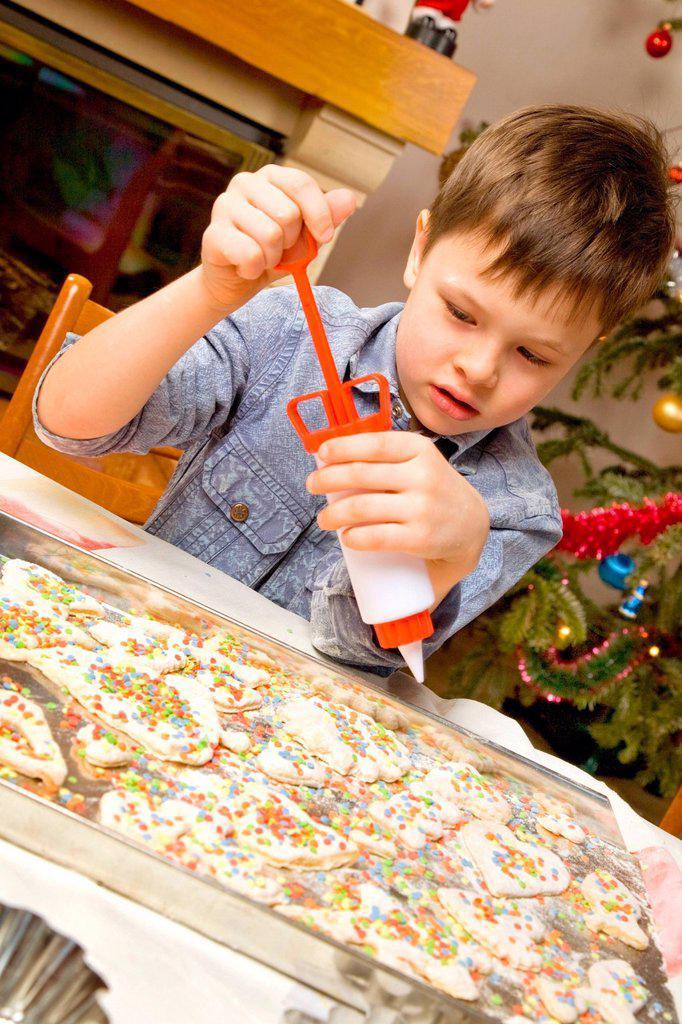 Stock Photo: 4123-43259 Boy decorating Christmas cake.