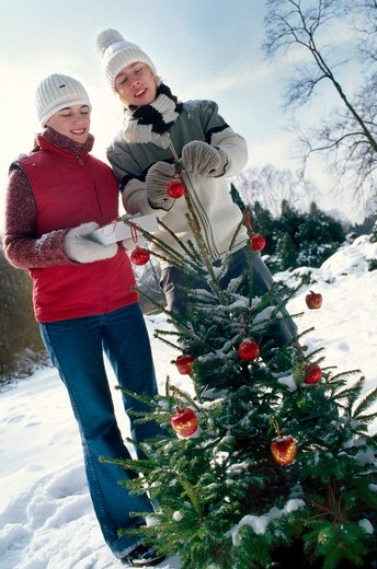 Couple decorating christmas tree : Stock Photo