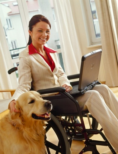 Woman in wheelchair with laptop : Stock Photo