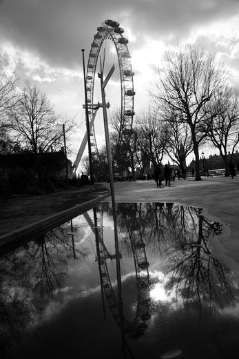 Reflection of a ferris wheel in water, Millennium Wheel, The Queen's Walk, South Bank, London, England : Stock Photo
