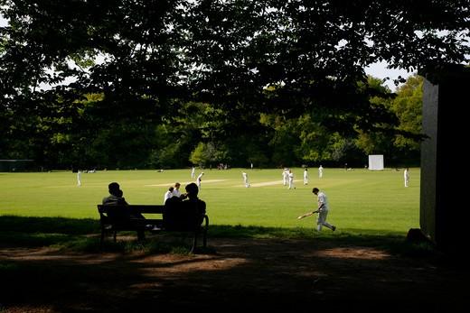 Game of cricket at Highgate Woods, Highgate, London, UK : Stock Photo