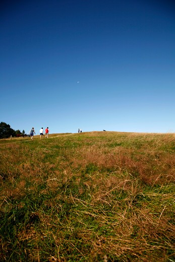View up to Parliament Hill, Hampstead Heath, Hampstead, London, UK : Stock Photo