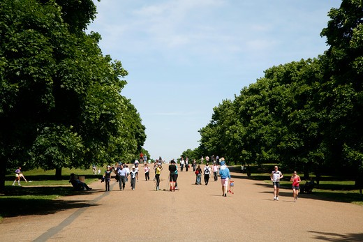 Broadwalk in Kensington Gardens, London, UK : Stock Photo