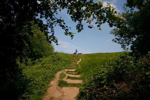 Looking up to the summit of Parliament Hill, Hampstead, London, UK : Stock Photo