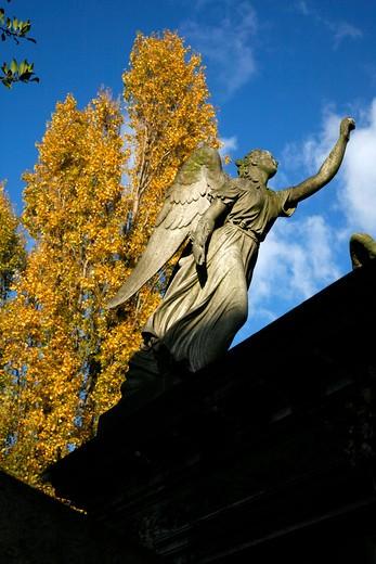 UK, London, Kensal Green, Angel sculpture atop tomb in Kensal Green Cemetery : Stock Photo