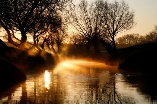 UK, London, Richmond Park, Mist rising off Beverley Brook at sunrise : Stock Photo