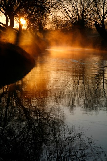 UK, London, Richmond Park, Mist rising off Beverley Brook at sunrise : Stock Photo