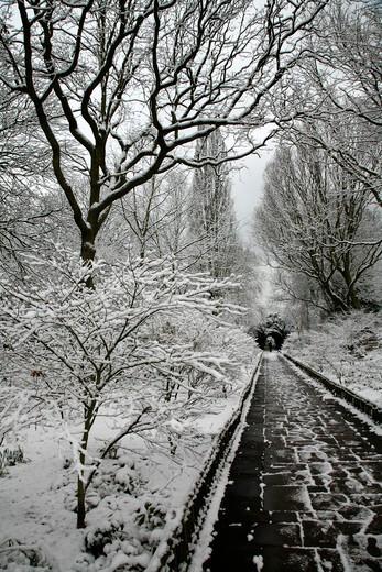 UK, London, Kensington, Looking up snowy Azalea Walk to Lord Holland Statue in Holland Park : Stock Photo