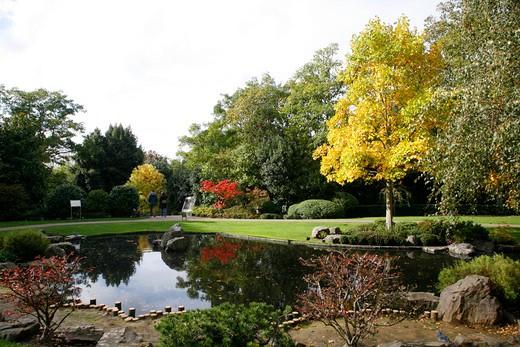 UK, London Kyoto Garden in Holland Park : Stock Photo