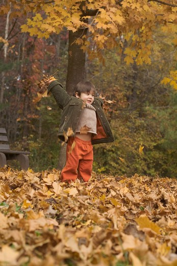Boy playing with dried autumnal leaves, New Jersey, USA : Stock Photo