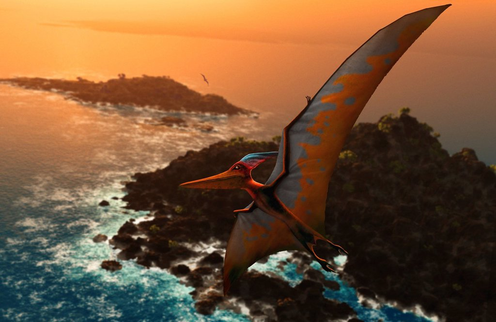 Stock Photo: 4128R-12503 Artwork of pteranodon sternbergi