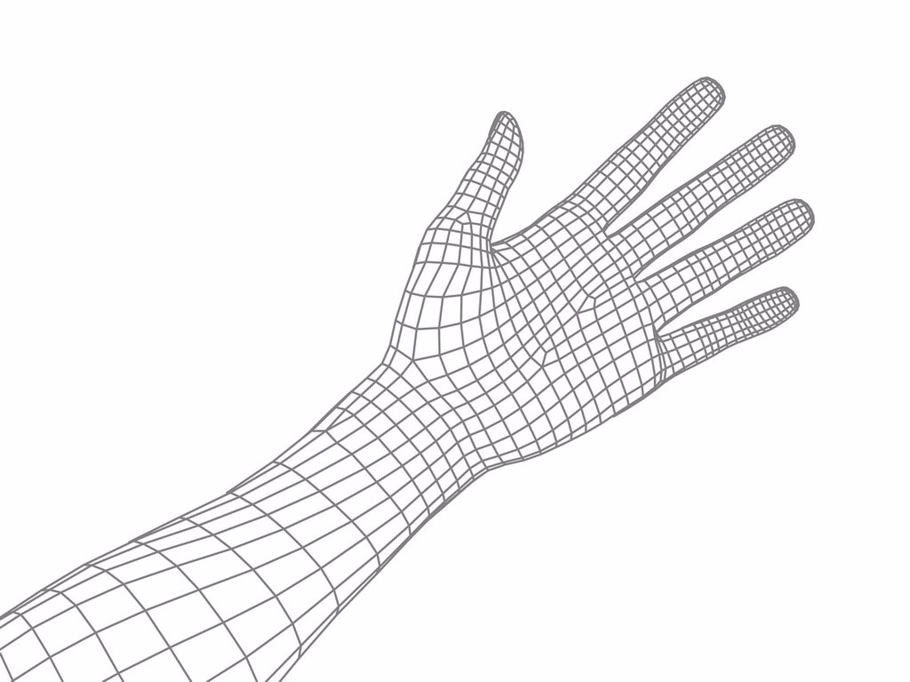 Computer artwork of a human hand and arm depicted in wireframe style. : Stock Photo
