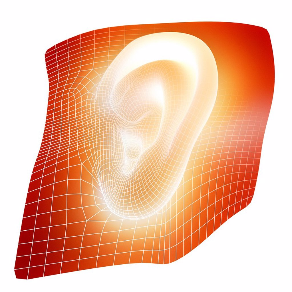 Human ear, computer artwork. This could represent the growing of new human organs in the laboratory. This process is called tissue engineering, using a patient´s stem cells. : Stock Photo