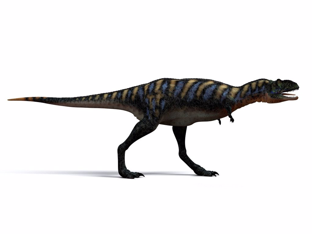 Stock Photo: 4128R-14872 Aucasaurus dinosaur. Computer artwork of an Aucasaurus, a medium sized dinosaur from Argentina that existed during the late Cretaceous, around 100 to 65 million years ago.