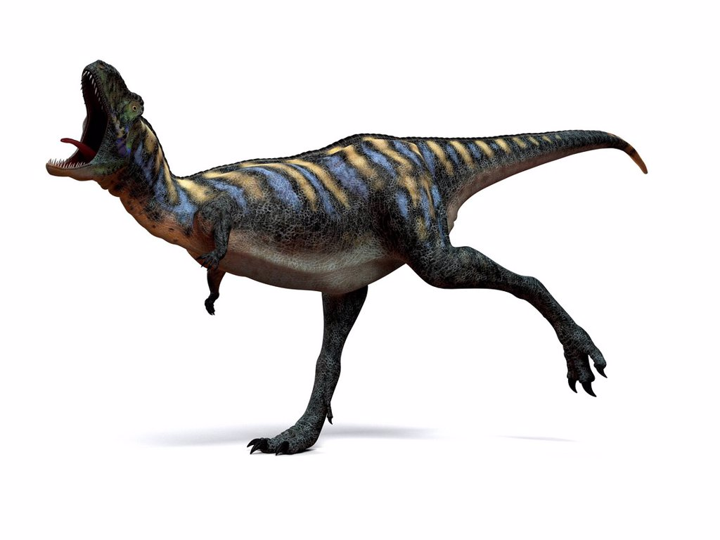Stock Photo: 4128R-15996 Aucasaurus dinosaur. Computer artwork of an Aucasaurus, a medium sized dinosaur from Argentina that existed during the late Cretaceous, around 100 to 65 million years ago.