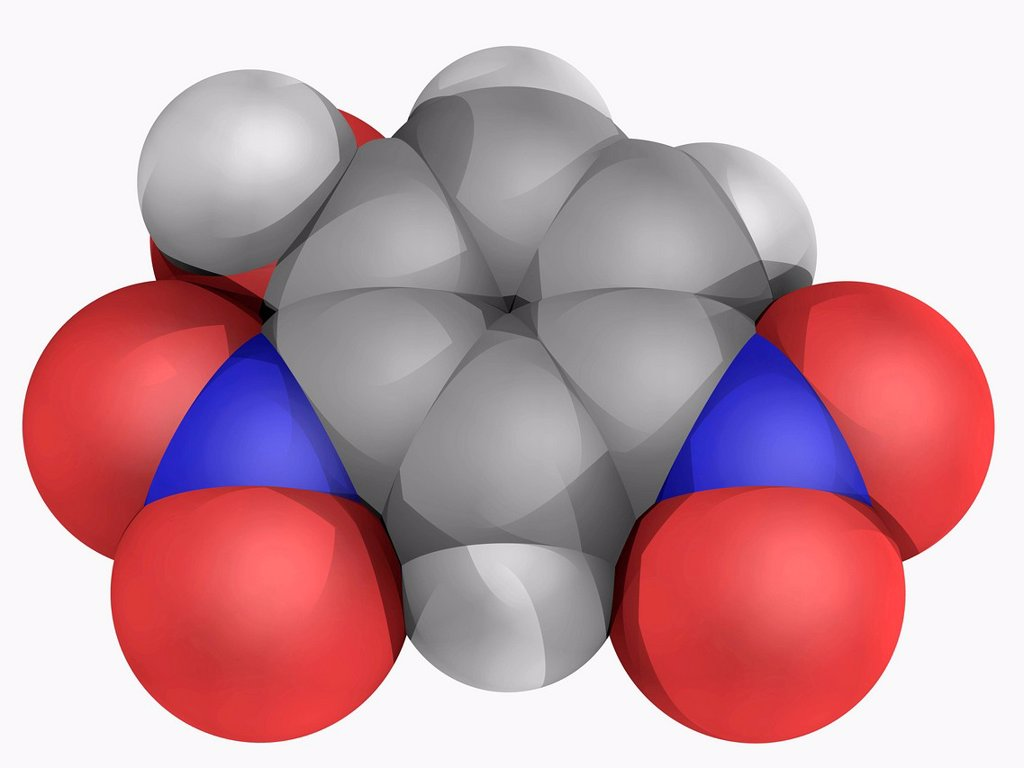 Stock Photo: 4128R-16130 2,4_Dinitrophenol, DNP, molecular model. Cellular metabolic poison which uncouples oxidative phosphorylation. Atoms are represented as spheres and are colour_coded: carbon grey, hydrogen white, nitrogen blue and oxygen red.