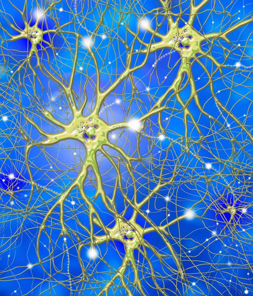 Stock Photo: 4128R-1618 Nerve cells, artwork