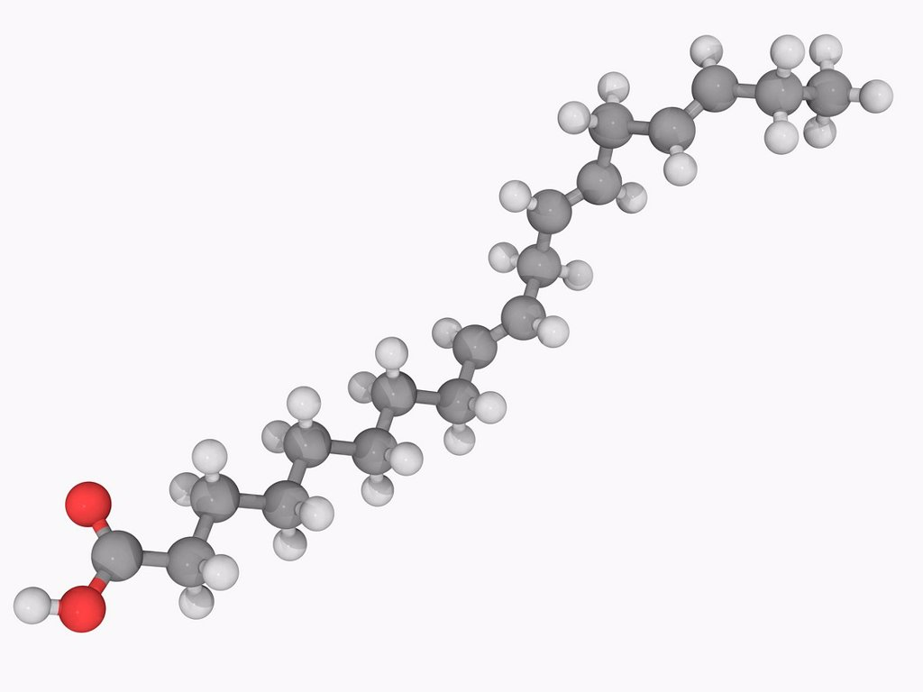 Stock Photo: 4128R-16213 Alpha_Linolenic acid, molecular model. Omega_3 fatty acid found in vegetable oils. Atoms are represented as spheres and are colour_coded: carbon grey, hydrogen white and oxygen red.