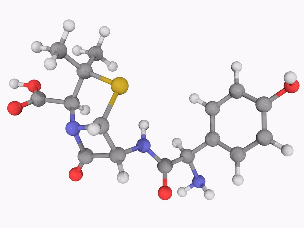 Stock Photo: 4128R-16221 Amoxicillin, molecular model. Antibiotic used for the treatment of bacterial infections. Atoms are represented as spheres and are colour_coded: carbon grey, hydrogen white, nitrogen blue, oxygen red and sulfur yellow.