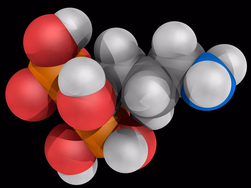Stock Photo: 4128R-16299 Alendronic acid, molecular model. Biphosphonate drug used for treatment of osteoporosis. Atoms are represented as spheres and are colour_coded: carbon grey, hydrogen white, nitrogen blue, oxygen red and phosphorus yellow.