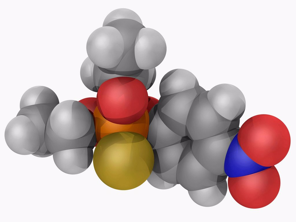 Stock Photo: 4128R-16524 Parathion, molecular model. Organophosphate compound used as insecticide and acaricide, toxic to human beings and animals. Atoms are represented as spheres and are colour_coded: carbon grey, hydrogen white, nitrogen blue, oxygen red, phosphorus orange and