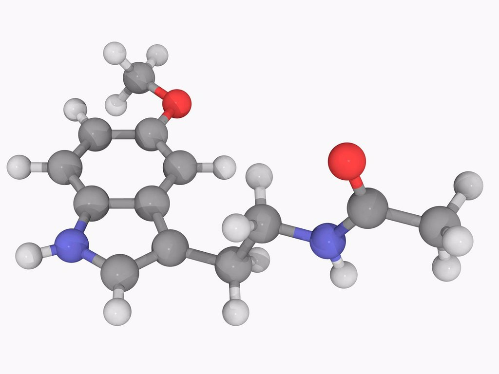 Melatonin, molecular model. Naturally occurring compound found in animals, plants and microbes. Atoms are represented as spheres and are colour_coded: carbon grey, hydrogen white, nitrogen blue and oxygen red. : Stock Photo