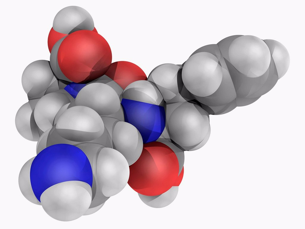 Stock Photo: 4128R-16708 Lisinopril, molecular model. Drug of the angiotensin_converting enzyme ACE inhibitor class used to treat hypertension, congestive heart failure and heart attacks. Atoms are represented as spheres and are colour_coded: carbon grey, hydrogen white, nitrogen