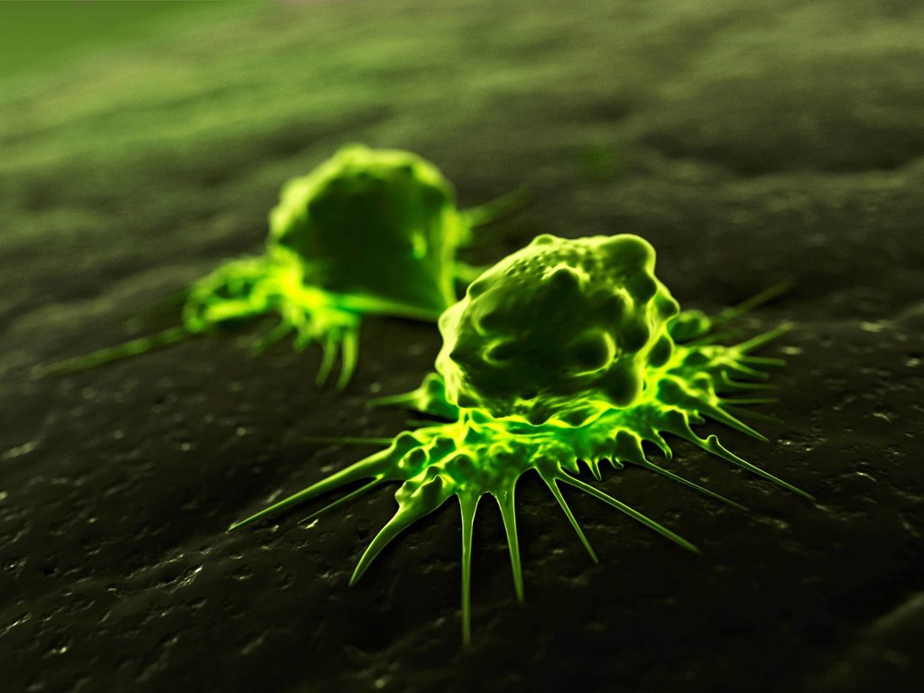 Cancer cells dividing, computer artwork. : Stock Photo