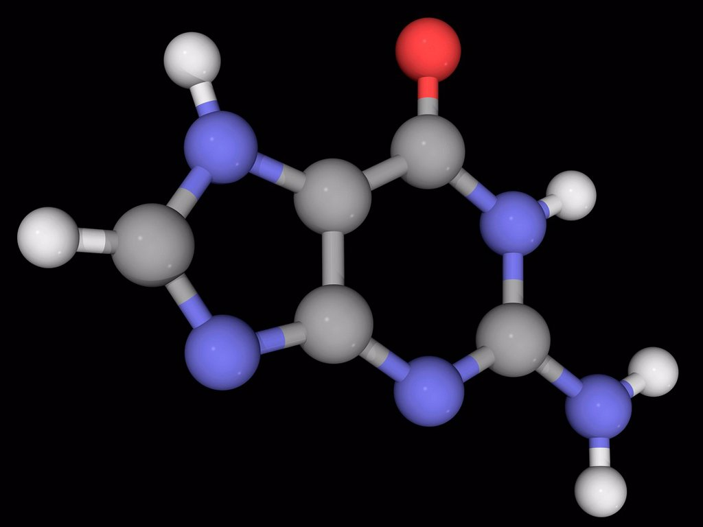 Stock Photo: 4128R-17262 Guanine, molecular model. One of the four main nucleobases found in DNA and RNA. Atoms are represented as spheres and are colour_coded: carbon grey, hydrogen white, nitrogen blue and oxygen red.