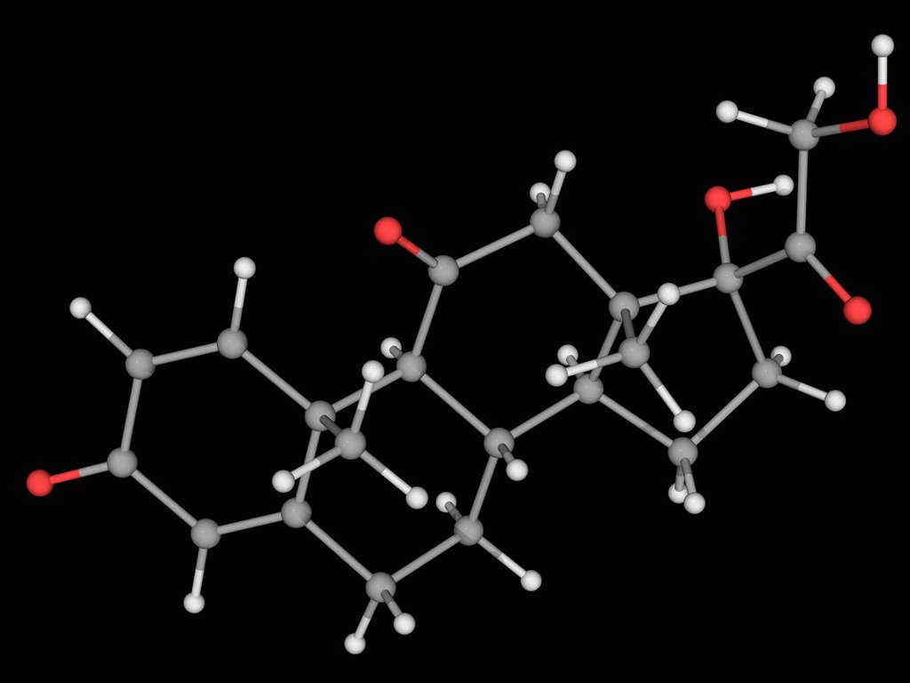 Stock Photo: 4128R-17269 Prednisone, molecular model. Glutocorticoid prodrug used to treat many different diseases from allergies to cancer. Atoms are represented as spheres and are colour_coded: carbon grey, hydrogen white and oxygen red.