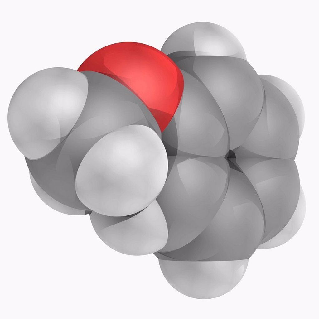 Stock Photo: 4128R-17288 Anisole, molecular model. Colourless liquid with an anise seed smell. Its derivatives are found in natural and artificial fragrances. Atoms are represented as spheres and are colour_coded: carbon grey, hydrogen white and oxygen red.