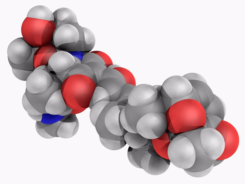 Streptolydigin, molecular model. Antibiotic acting by blocking nucleic acid chain elongation by binding to the polymerase and used to treat infections by gram positive bacteria. Atoms are represented as spheres and are colour_coded: carbon grey, hydrogen : Stock Photo
