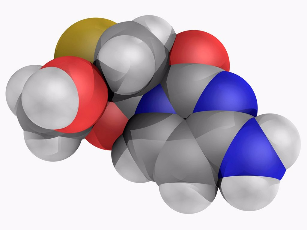 Lamivudine, molecular model. Potent nucleoside analogue reverse transcriptase inhibitor used for treatment of chronic hepatitis B. Atoms are represented as spheres and are colour_coded: carbon grey, hydrogen white, nitrogen blue, oxygen red and sulfur yel : Stock Photo