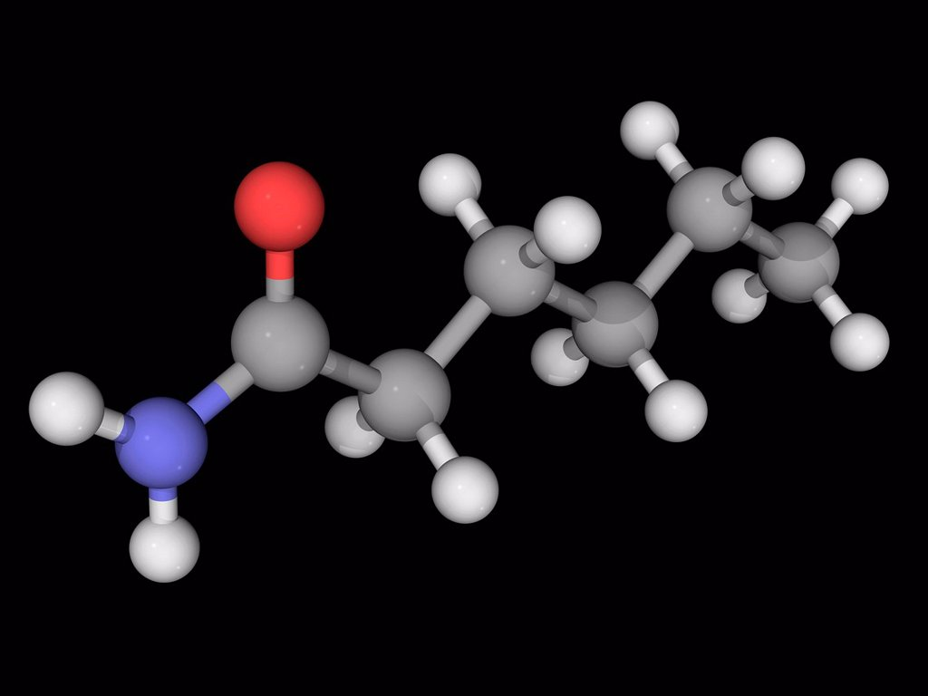 Stock Photo: 4128R-18065 Hexanamide capronamide, molecular model. Organic compound, amide. Reacts with azo and diazo compounds to generate toxic gases. Atoms are represented as spheres and are colour_coded: carbon grey, hydrogen white, nitrogen blue and oxygen red.