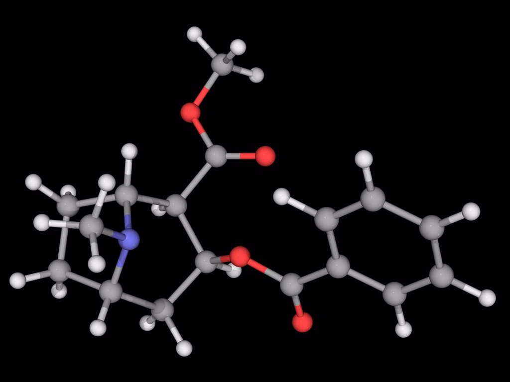 Stock Photo: 4128R-18151 Cocaine, molecular model. Alkaloid obtained from coca plant leaves. Serotonin_norepinephrine_dopamine reuptake inhibitor, powerful nervous system stimulant. Atoms are represented as spheres and are colour_coded: carbon grey, hydrogen white, nitrogen blue