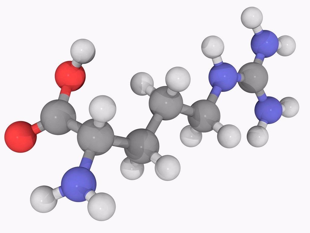 Arginine, molecular model. Nonessential alpha_amino acid found in a variety of foods. Atoms are represented as spheres and are colour_coded: carbon grey, hydrogen white, nitrogen blue and oxygen red. : Stock Photo