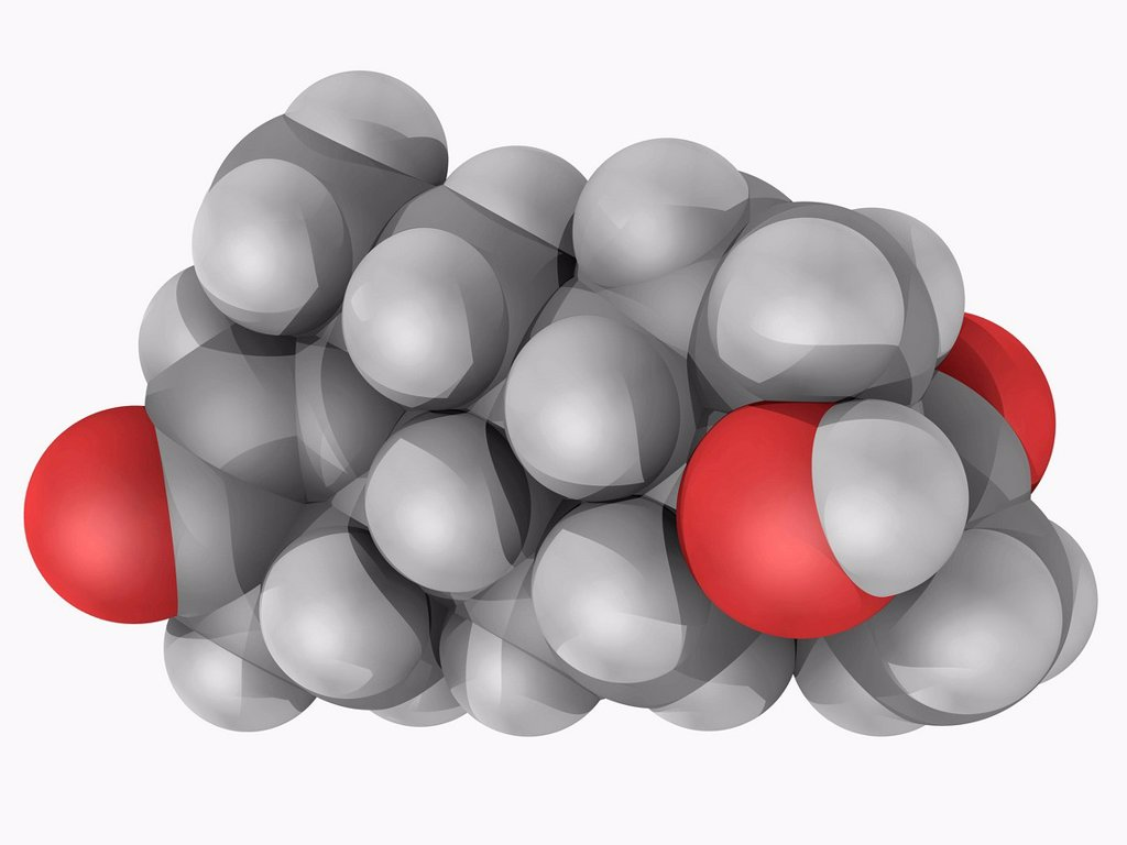 Stock Photo: 4128R-18498 Medroxyprogesterone, molecular model. Drug acting as a progestin. Used to regulate irregular periods in a women´s menstrual cycle. Atoms are represented as spheres and are colour_coded: carbon grey, hydrogen white and oxygen red.