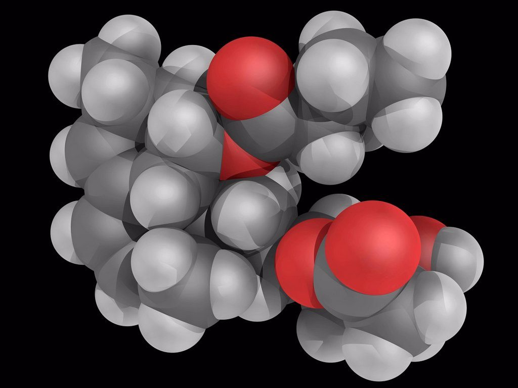 Stock Photo: 4128R-18517 Lovastatin, molecular model. Drug used for treating dyslipidemia and for prevention of cardiovascular disease. Atoms are represented as spheres and are colour_coded: carbon grey, hydrogen white and oxygen red.