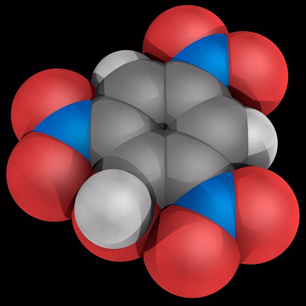 Stock Photo: 4128R-18816 Picric acid, molecular model. Explosive organic component and one of the most acidic phenols. Atoms are represented as spheres and are colour_coded: carbon grey, hydrogen white, nitrogen blue and oxygen red.