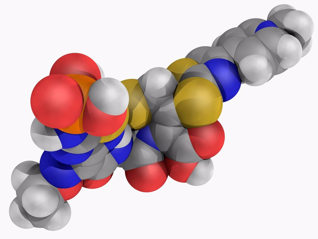 Ceftaroline, molecular model. Advanced generation cephalosporin antibiotic used against methicillin_resistant bacteria. Atoms are represented as spheres and are colour_coded: carbon grey, hydrogen white, nitrogen blue, oxygen red and sulfur yellow. : Stock Photo