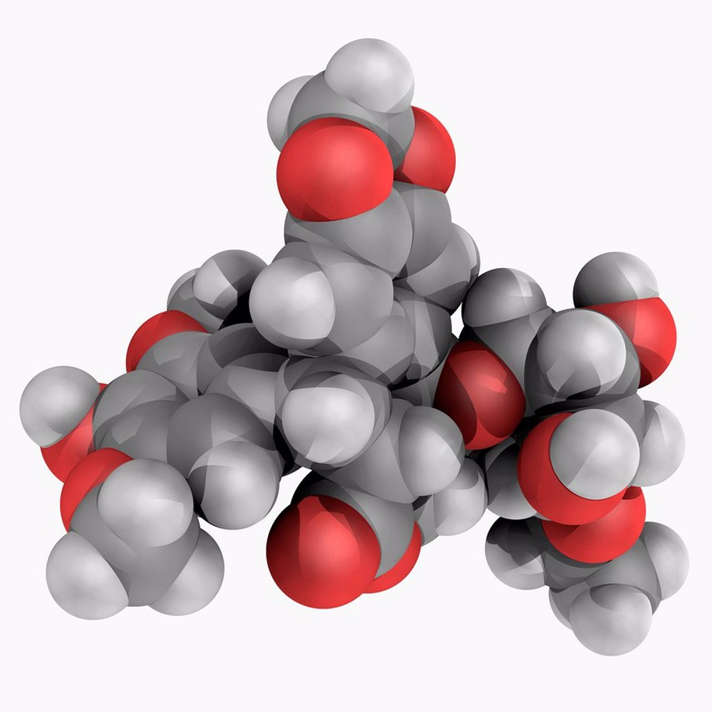 Stock Photo: 4128R-18872 Etoposide, molecular model. Topoisomerase inhibitor used in chemotherapy for cancers as Ewing´s sarcoma, lung cancer, testicular cancer, lymphoma, and lymphocytic leukaemia. Atoms are represented as spheres and are colour_coded: carbon grey, hydrogen whit