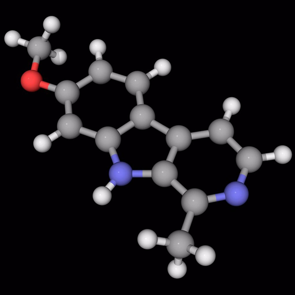 Harmine, molecular model. Fluorescent harmala alkaloid occurring in different plants. It slows the breakdown of neurotransmitters by reversibly inhibiting monoamine oxidase A. Atoms are represented as spheres and are colour_coded: carbon grey, hydrogen wh : Stock Photo