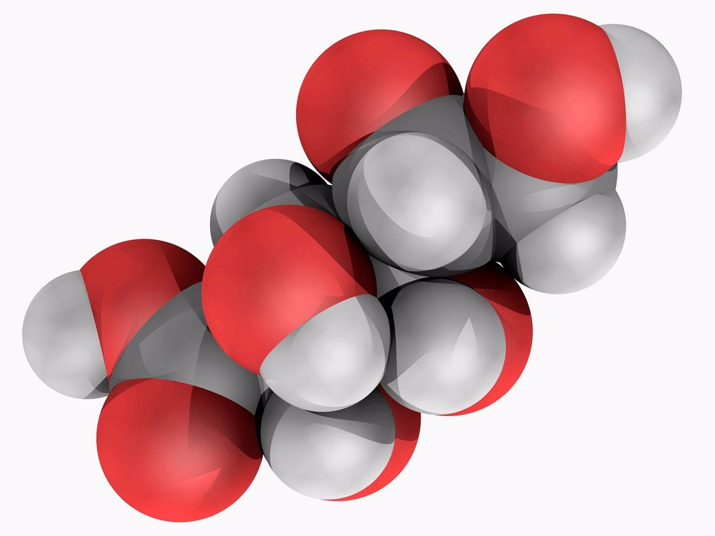 Stock Photo: 4128R-19045 Gluconic acid, molecular model. Organic compound naturally occurring in fruit, honey, kombucha tea and wine. Atoms are represented as spheres and are colour_coded: carbon grey, hydrogen white and oxygen red.