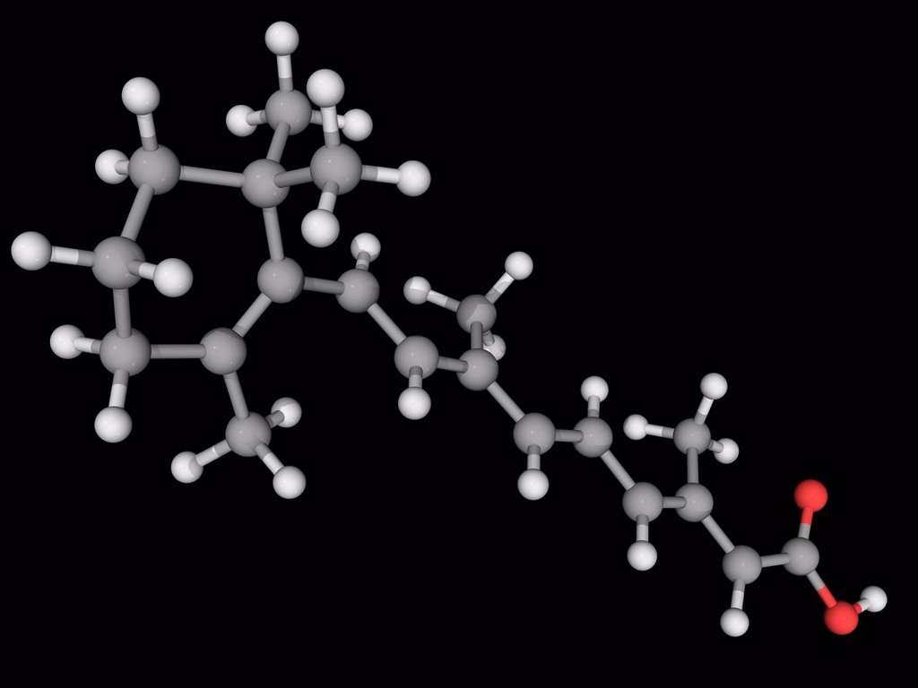 Stock Photo: 4128R-19133 Tretinoin, molecular model. Acid form of vitamin A commonly used to treat acne and hair loss. Atoms are represented as spheres and are colour_coded: carbon grey, hydrogen white and oxygen red.