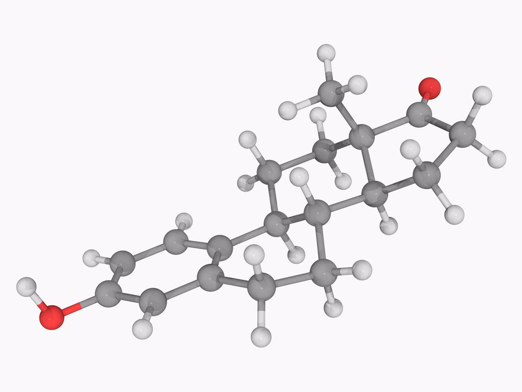 Stock Photo: 4128R-19215 Estrone, molecular model. Sex hormone, one of the three main estrogens produced by the human body estradiol, estriol and estrone. Atoms are represented as spheres and are colour_coded: carbon grey, hydrogen white and oxygen red.